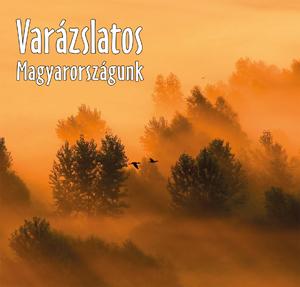 Varázslatos Magyarországunk 2010