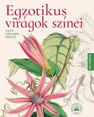 Egzotikus virágok színei