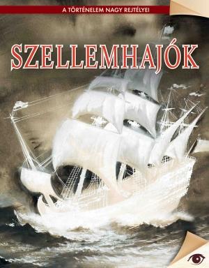 A történelem nagy rejtélyei sorozat 18. kötet Szellemhajók