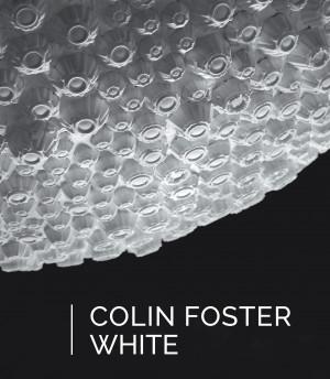 Colin Foster: White