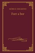 Móricz Zsigmond prózai művei - 5. kötet, Forr a bor