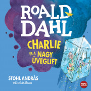 Charlie és a nagy üveglift - hangoskönyv